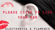 electronica - flamenko