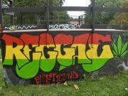 reggae gecesi
